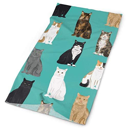 NA Cats Patrón razas gato 2 diadema faciales maquillaje