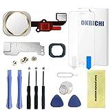 OKBICHI Botón de Inicio para iPhone 6/6 Plus (Dorado) con Flexible Cable de Repuesto - Herramienta de Reparación con Protector de Pantalla