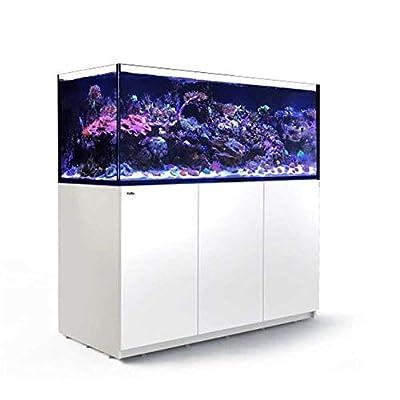 Reefer Red Sea XXL Aquarium Complet Blanc 625 l