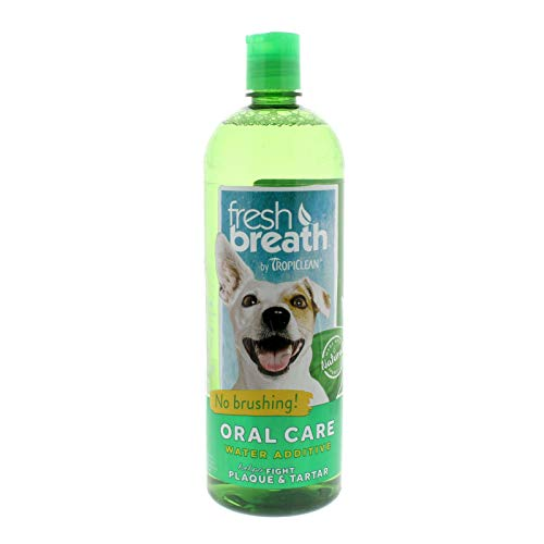 What Can I Give My Dog for His Bad Breath?