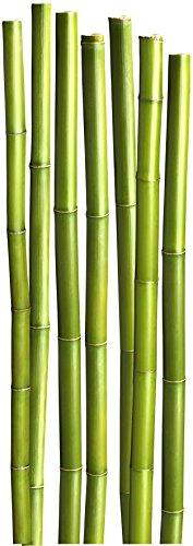 Plage Bambús Decoración Mural Adhesiva Gigante, Vinilo, Verde, 58x0.1x168 cm