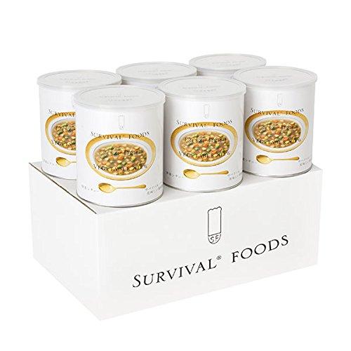 サバイバルフーズ野菜シチュー(440g)6缶セット
