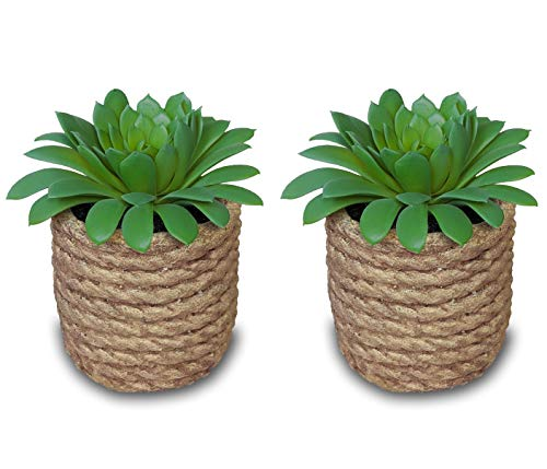 Artificial Succulent Plant in Rope Cement Pot - Set of 2 pots, 5 Inch Tall, Fake Small Greenery Perfect for Office, Home, Kitchen, Bathroom, Bookshelf (Cement Jute)