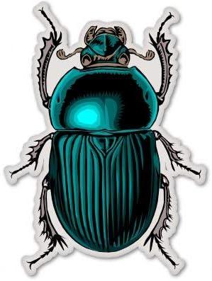 Beetle Decal 2 Pack Beetle Bug Stickers
