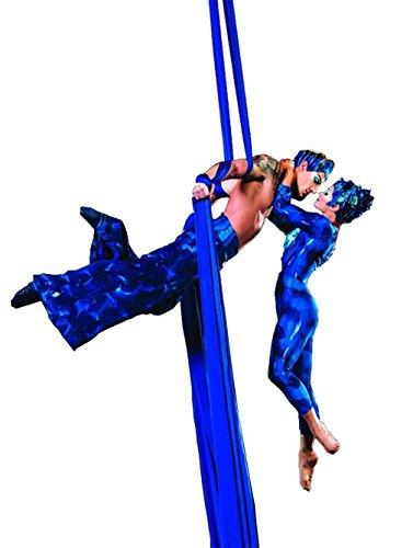 10 Metros Yoga DIY equipo el yoga antigravedad Hamaca Correa volar para Yoga Pilates aérea el equipo de la danza aérea Aerial Silks Solamente los tejidos sin accesorios (azul marino, 10)