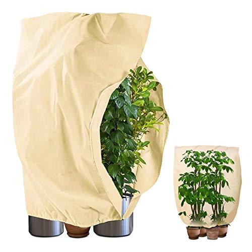BENESINLU Winterschutz für Pflanzen Kübelpflanzensack Pflanzenschutzhauben Winterschutz Frostschutz Pflanzenschutzsack Pflanzenabdeckung mit Zugband (180 x 120 cm, Beige)