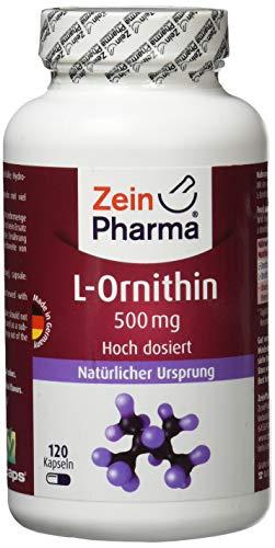 ZeinPharma L-Ornithin 500 mg 120 Kapseln (5 Wochen Vorrat) Glutenfrei, vegan, koscher & halal Hergestellt in Deutschland, 74 g