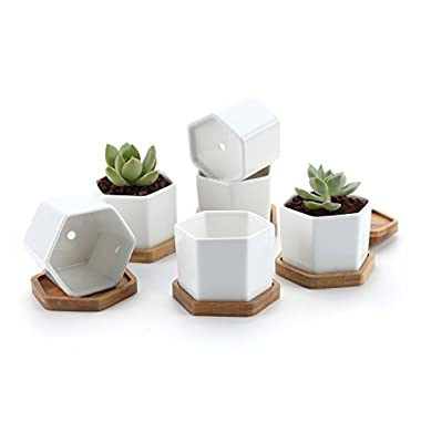 T4U 2.75  White Ceramic Hexagon Succulent Cactus Planter Pots with FREE Bamboo Tray for Home Decoration 1 Pack of 6