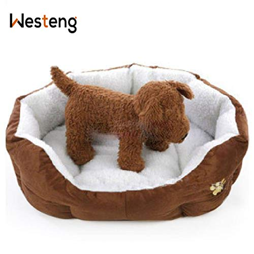 Westeng 1 Stück Ultra-weiche Baumwolle Welpen Nest Katzenbett, Kleine Haustierbett Teddy Kennel waschbar,50 x 40 x 15 cm - 2