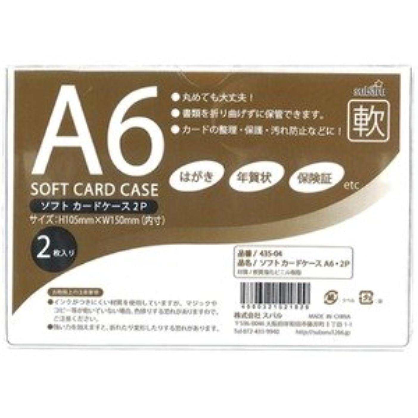 スリーブ縞模様の複雑なソフトカードケースA6?2P【12個セット】 435-04