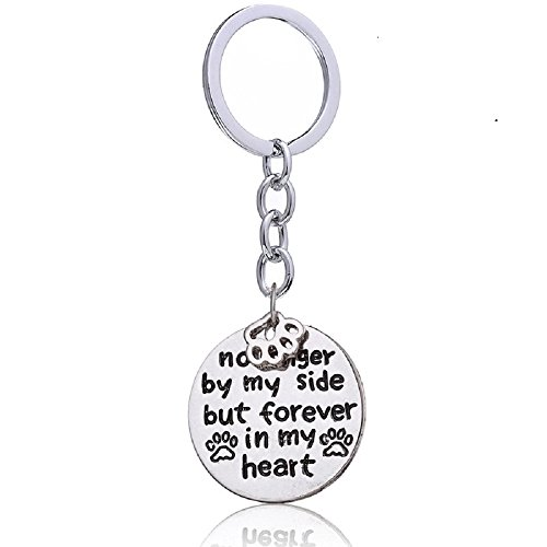 Dog/pet paw Tiny Charm no Longer by My Side but Forever in My Heart Print paw Keyring pet Lovers Keychain
