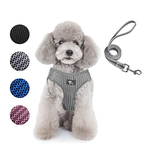 Dog and Cat Universal Harness with Leash - Cat Harness Escape Proof - Adjustable Reflective Step in Dog Harness for Small Dogs Medium Dogs - Soft Mesh Comfort Fit No Pull No Choke, Grey, S