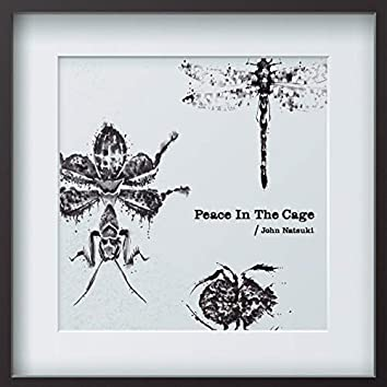 Peace in the Cage
