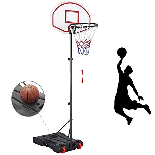 Basketball Hoop System review