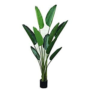 Xi Yang Jing INS Wind Nordic Wind Artificial Trees Traveler's Banana Fake Tree Green Planting Decoration Floor Bonsai