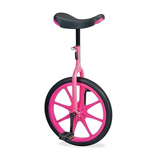 エバニュー(EVERNEW) 一輪車(ノーパンク)20 EKD138 ピンク