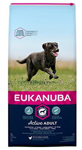 Eukanuba Droge Voeding Voor Volwassenen Voor Grote Honden Met Vers Kip, 15 Kg