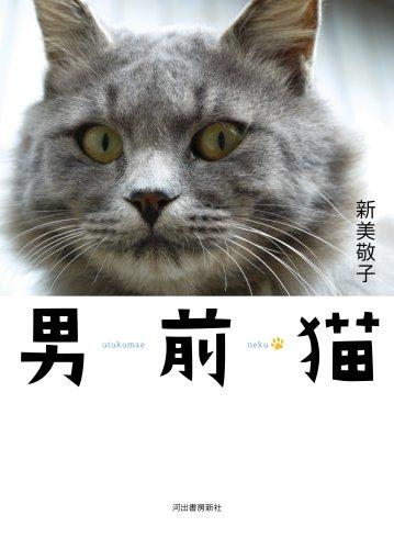 男前猫の詳細を見る