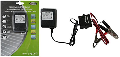Batterieladegerät 12V Auto Batterie Ladegerät 500MA Starthilfegerät