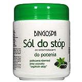BINGOSPA sal para pies con problemas de sudoración - 550 G
