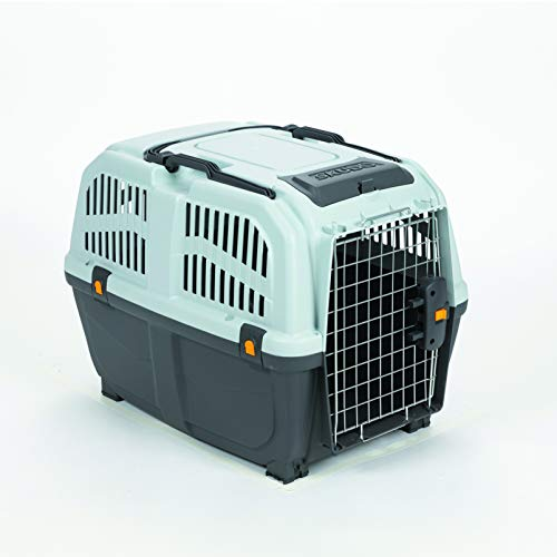 Nobby Dog Carrier Skudo IATA