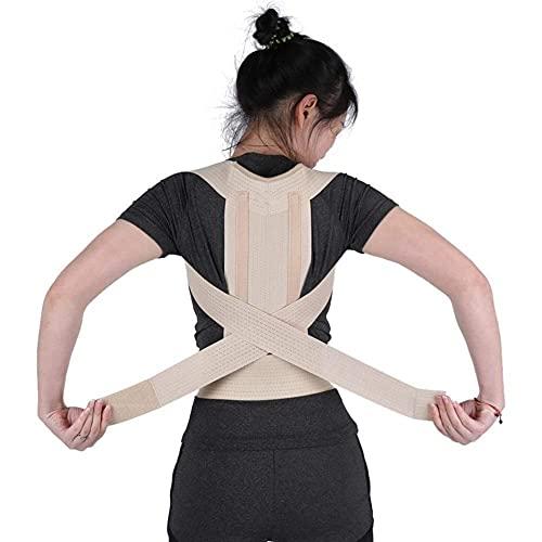 Tirantes para la espalda Corrector de postura Brace Cinturón de soporte para la columna vertebral Mujeres Hombres Hombro Lumbar Corsé de espalda Cinturón ortopédico de corrección de postura (Color: M)