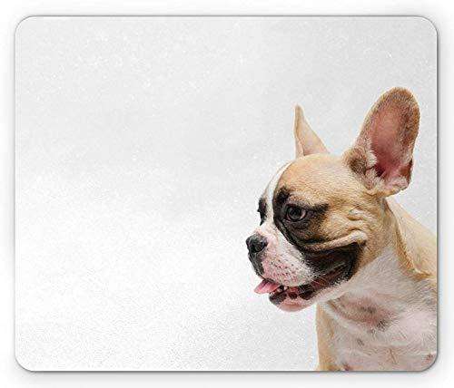 Mausmatte, Bulldogge Seitenansicht einer französischen Bulldogge mit der Zunge heraus auf einem einfachen Hintergrund Weißes und mehrfarbiges gewebtes Mausmattenpad für Laptop-Matten-Tourismus,25x30cm