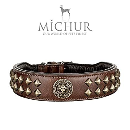 (1. WAHL - NEU!!!) Michur Diego, ein weiches und starkes Hundehalsband aus Leder / Lederhalsband für Hunde! Das Modell Diego ist aus braunem Leder mit goldenen Flachnieten und Löwenkopf Applikation gefertigt. In der Gesamtlänge 75cm und 4,5cm Breite,...