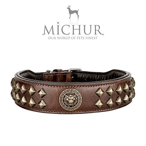 Michur Diego - Collar de piel para perro, color marrón y dorado