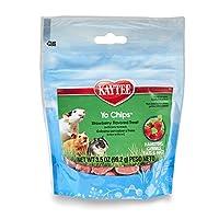 Kaytee Fiesta Yogurt Straw Chip Snacks for Small Animals, 3.5-Ounce by Kaytee