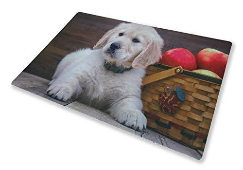 Tex family Alfombra felpudo digital 40 x 60 cm perro cachorro labrador