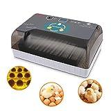 Incubadora Automática de 12 Huevos con Pantalla...