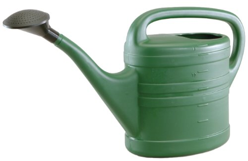 Tierra Garden 5013 Large 3.5-Gallon Plastic Watering Can, Green