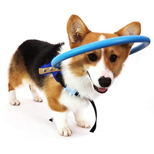 RUNMIND Arnés para Perro ciego Chaleco Protector para Perros con Ojos Enfermos para Evitar Colisiones M
