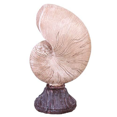 Garneck Concha Decoración Náutica Mar Nautilus Concha Esta
