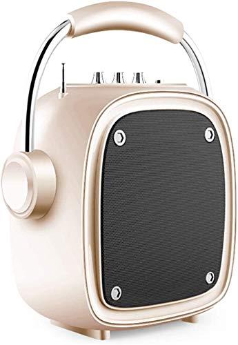 Mopoq Drahtlose Bluetooth-Lautsprecher - bewegliche kleine Außen-Player-Miniübergewicht Subwoofer / 16X10X25.5cm Lautsprecher (Color : Gold)