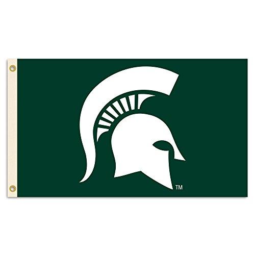 NCAA Michigan State Spartans 3 x 5-Feet Flag with Grommets, Green
