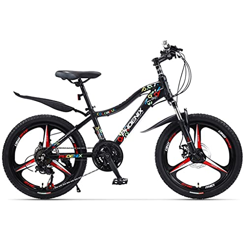 ZXQZ Bicicletas para Niños, Muchachos Bicicletas de Montaña de Velocidad Variable de 20 Pulgadas, Carreras de Una Rueda de Aleación de Aluminio, Regalos de Cumpleaños para Niños (Color : Black)