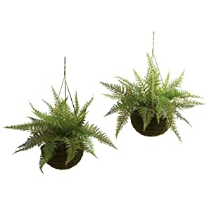 Nearly Natural 6743-S2 Indoor/Outdoor Leather Fern with Mossy Hanging Basket, Green, Set of 2