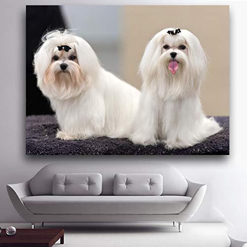 Geiqianjiumai Tierwandbilder Zwei lustige ehrliche maltesische Hunde schmücken das Wohnzimmer. Zeigen Sie Wandbilder an. Wandbilder Bilder rahmenlose Gemälde 30x40cm