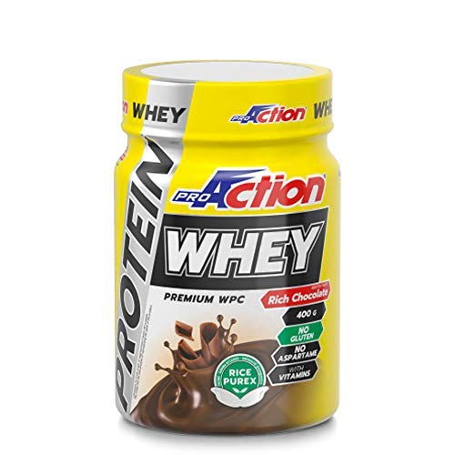 Proaction Protein Whey (Rich Chocolate) - 400 Gr