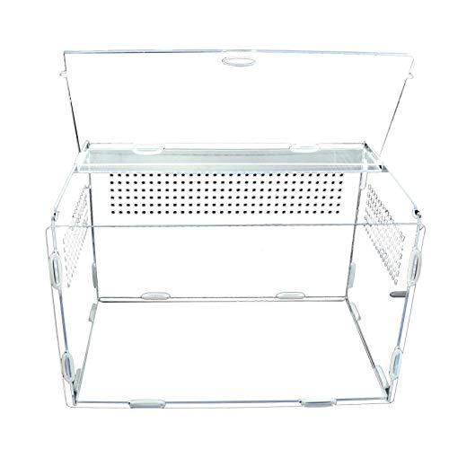 S/V Terrarium Transportbox Acryl Reptil Fütterungsbox Transparente Reptilien Zuchtbox mit kleinen Luftlöchern für Spinnenechsen Frosch Cricket Schildkröte
