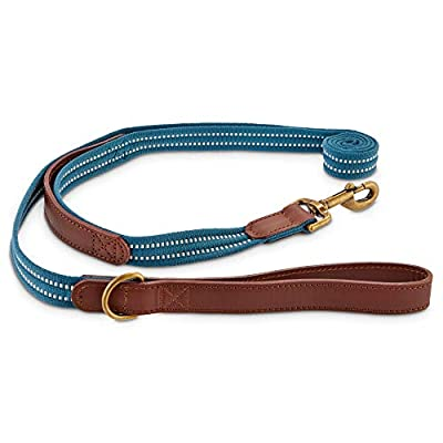 Reddy Slate Blue Webbed Nylon Dog Leash, 6 ft.