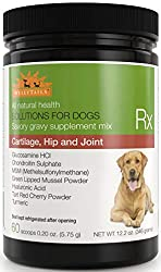 WellyTails Cartilage, Hip and Join Supplement for Dogs