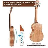 Immagine 2 martisan ukulele concerto con corde