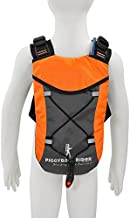 Piggyback Rider Child Safety Harness Backpack Hydration Ready for Hiking, Parks, Travel, Festival, Concerts (Orange)