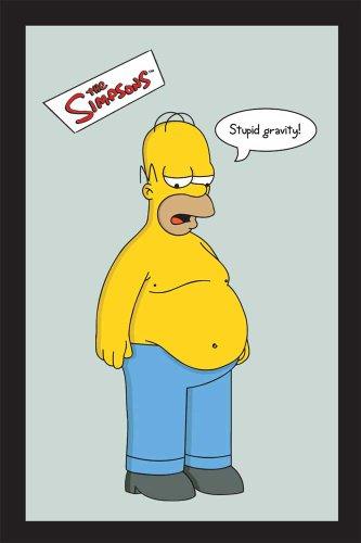Empire 538284 - Quadro I Simpsons, Stupid Gravity, su Vetro Stampato con Cornice in plastica Effetto Legno, 20 x 30 cm