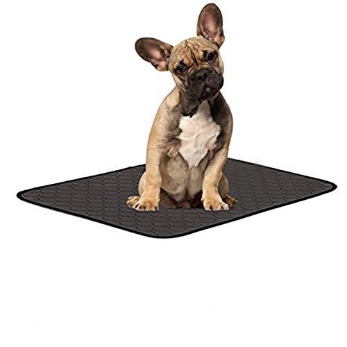 Makerfire Waschbare Trainingseinlagen für Hunde schnell absorbierend wiederverwendbar Windelunterlage mit wasserdichter Rutschfester Unterseite für Welpen Hunde (M-67 * 50 cm)