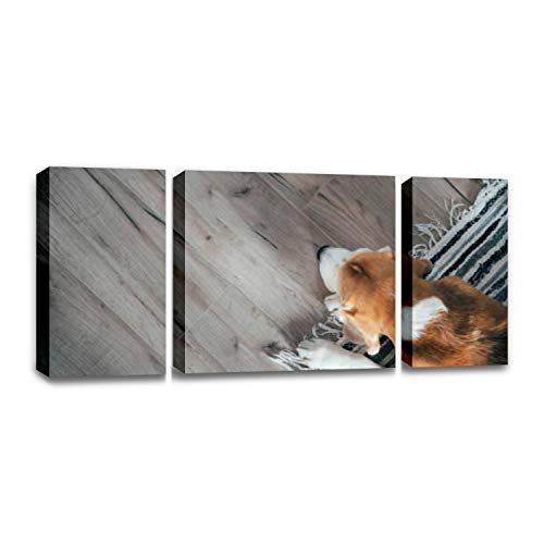 CCArtist Beagle Dog Peacefully Sleeping on Striped mat on Laminate Floor Pets Wall Decoration Print Photo on Canvas Modern Photography Home Decor Modern Canvas Painting Wall Art