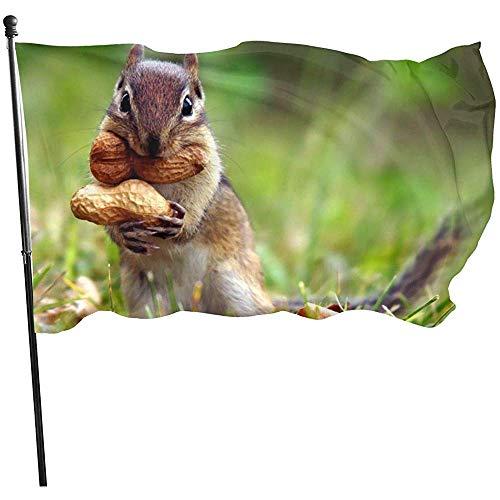 wallxxj Garten Flagge Lustiges Eichhörnchen-Klares Drucken Feiertags-Bunte Garten-Flaggen-Standardyard-Flagge Willkommenes Yard-Fahne 150X90Cm Im Freien